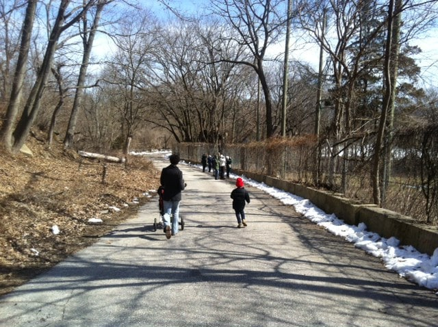 An adult and a child walk the path in Tacony Creek Park in winter.