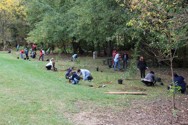 Students and teachers plant a riparian buffer along the Jenkintown Creek in 2014.