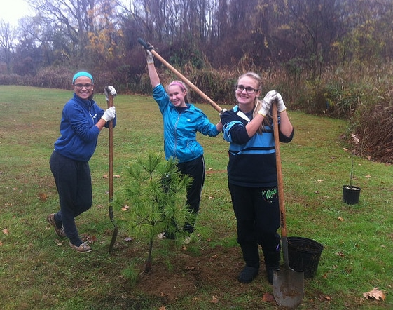 Girls with shovels stand smiling around a newly-planted sapling.