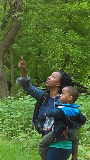 A woman holding a little boy points at a bird up in a tree.